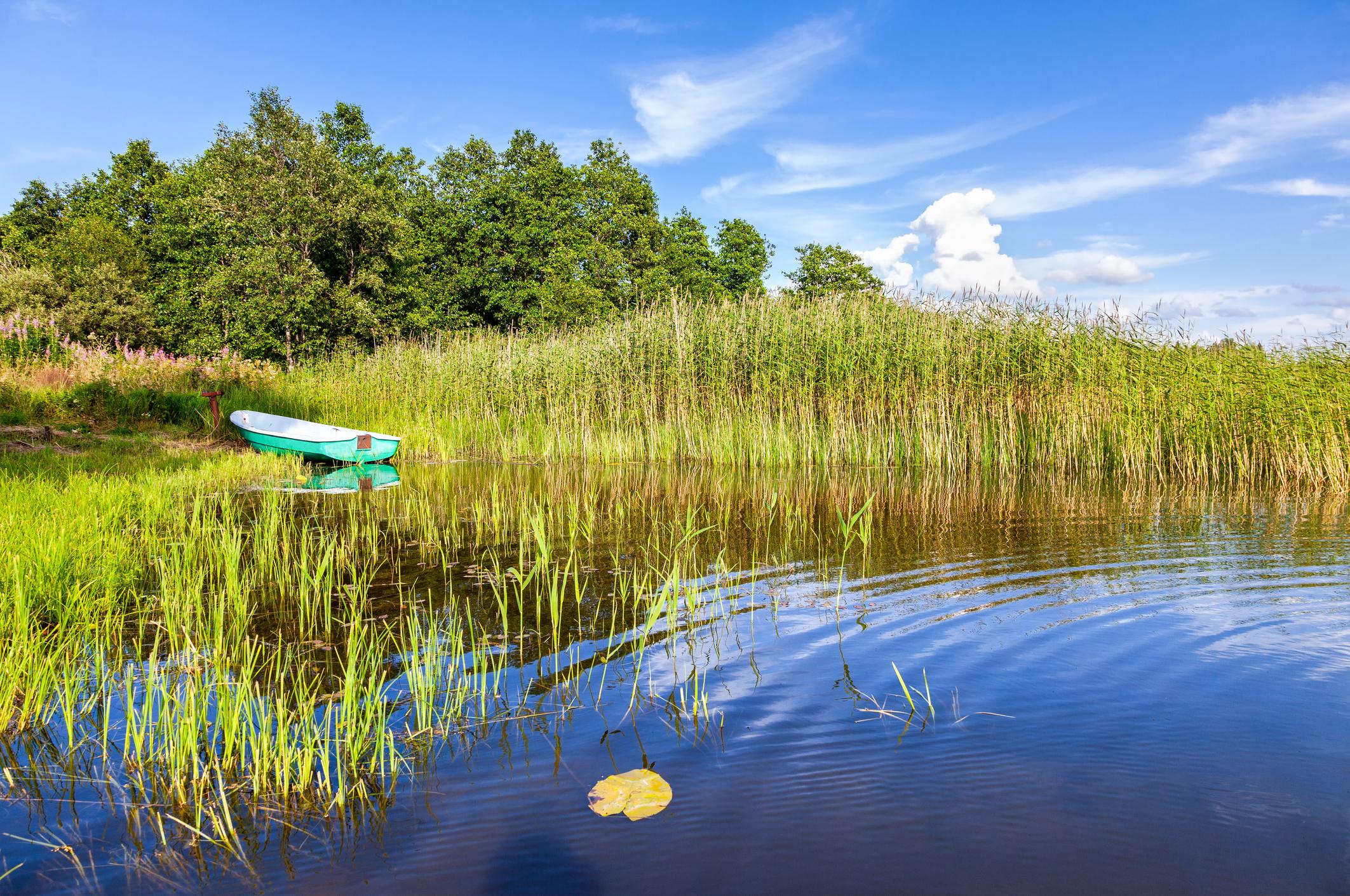 Improving Fish Habitat in Small Ponds