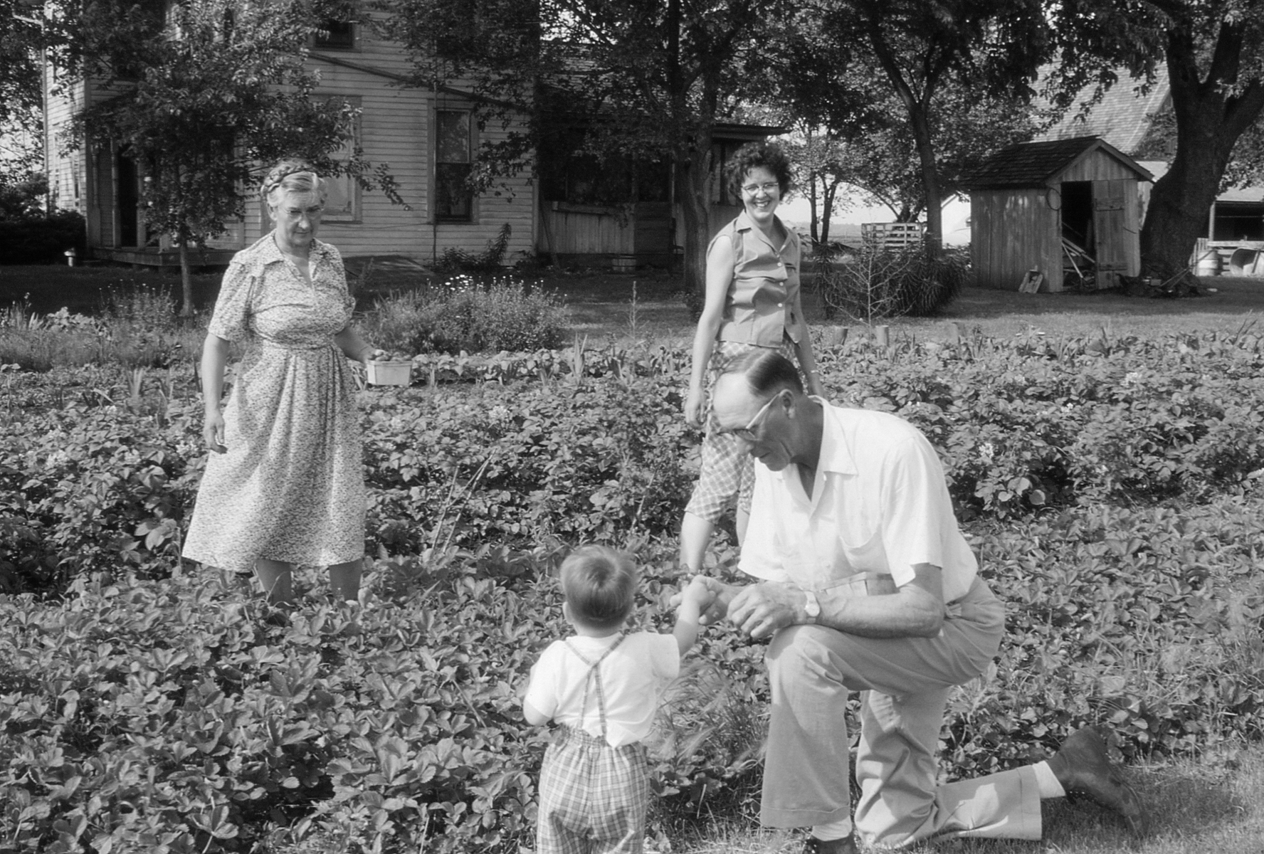 The Victory Garden Makes a Comeback
