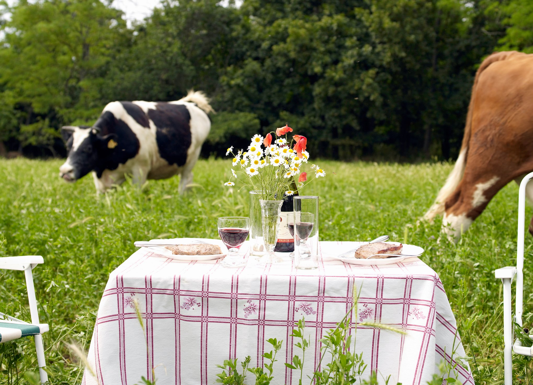 7 Ways to Celebrate Valentine's Day in the Country