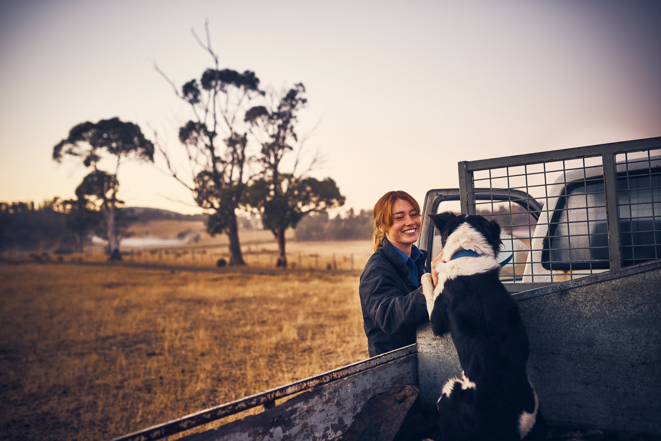 Farm Dogs: Introducing your pup to life on the farm