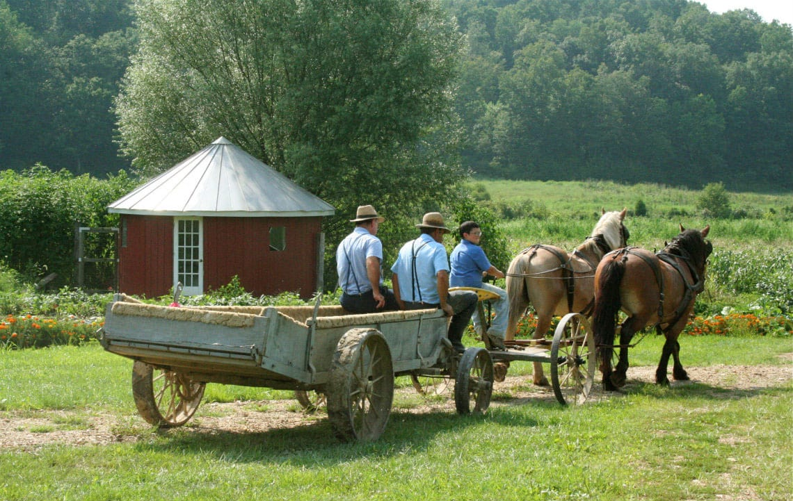 Mennonites & Me   Rethink Rural Blog   Rural Life