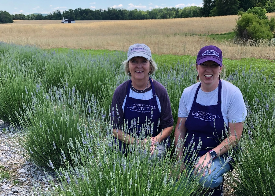 The Woodstock Lavender Co.---A Mother-Daughter Herb Farm Thrives In Rural Kentucky