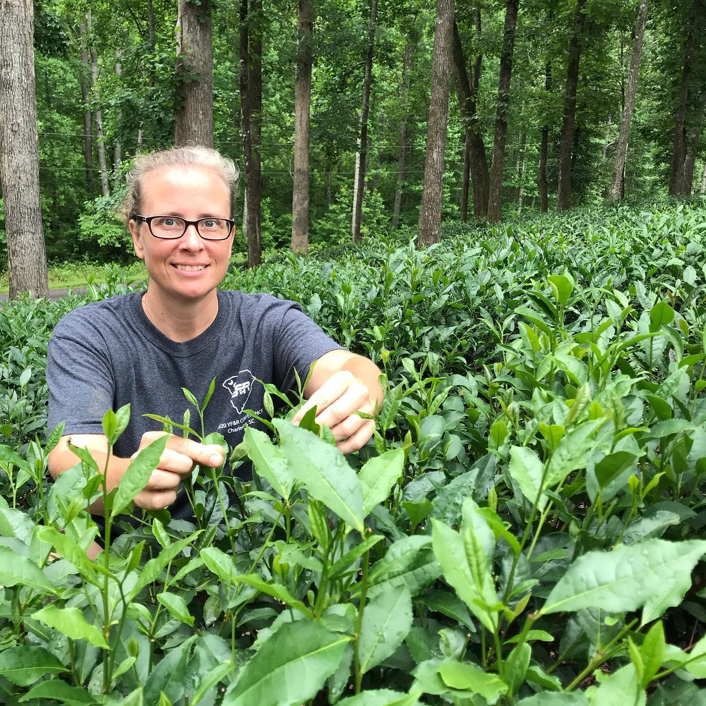 How This Couple Started an American Tea Company On Their Rural Land